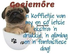 Good Morning Wishes, Good Morning Quotes, Cute Quotes, Funny Quotes, Lekker Dag, Afrikaanse Quotes, Goeie More, Special Quotes, More Cute