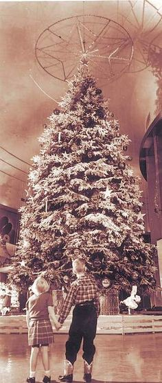 The Ford Rotunda's yearly holiday displays were a cherished tradition for many Detroit families. Flint Michigan, State Of Michigan, Detroit Michigan, Detroit State, Dearborn Michigan, Detroit Area, Vintage Christmas Photos, Vintage Photos, Vintage Stuff