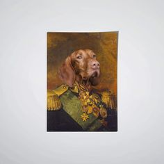 loulou clayton custom pet portraits Check out our FAQ below for pet portrait tips so you can make sure you capture the perfect picture of Fido!