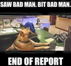 K-9 OFFICER FILING REPORT--We're totally digital now!