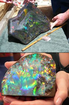Found by Stuart Hughes and his team, this stunning opal is valued at over 1 million dollars and it outweighs the previous record holder by an unbelievable 48,900 carats.
