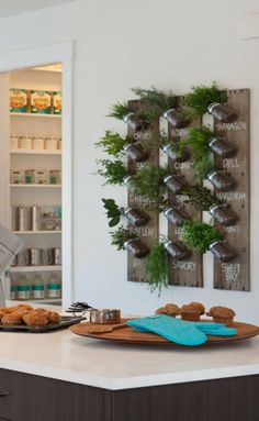 Vertical herb garden. Found image on www.houzz.com