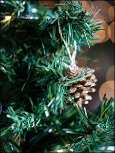 How to Make Your Own Christmas Tree Ornaments : Pinecone Ornaments   www.thedecorbar.com Pinecone Ornaments, Christmas Tree Ornaments, Christmas Wreaths, Make Your Own, Make It Yourself, How To Make, Pine Cones, Bar, Holiday Decor