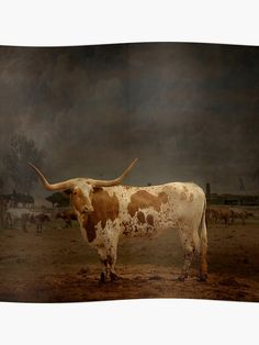 Longhorn Cattle Stare Down Grazing Pasture HD Vinyl Poster Wall Decal Sticker