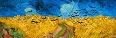 Van Gogh in 3D Exhibition opens tomorrow (12 July) in La Boca Buenos Aires www.buenosairesstay.com