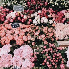 The flower market May Flowers, Fresh Flowers, Colorful Flowers, Spring Flowers, Beautiful Flowers, Fleur Design, No Bad Days, No Rain, Arte Floral