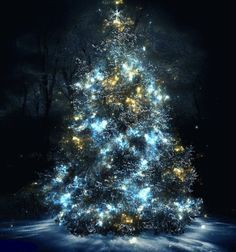 A Very Happy Christmas and seasons greetings to everyone :) and a big thank you for following and for your ' Likes '