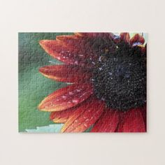 Red Sunflower Petals And Rain Drops Jigsaw Puzzle - red gifts color style cyo diy personalize unique