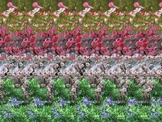 magic   Floating flowers