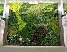 Kiến trúc vườn trên tường - Hứa hẹn bùng nổ trong tương lai