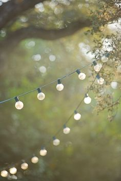View a variety of garden lighting ideas along with products to get the look. outdoor lighting ideas, backyard lighting ideas, frontyard lighting ideas, diy lighting ideas, best for your garden and home Ar Fresco, What A Nice Day, Festa Party, Globe Lights, Bulb Lights, Xmas Lights, Back To Nature, Twinkle Twinkle, Twinkle Lights