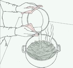 Pouring Hot Water Over Pine Needles