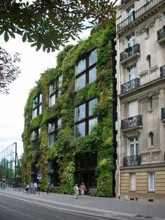Begrünte Fassade, Musée du Quai Branly, Paris