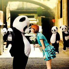Panda Love ♥