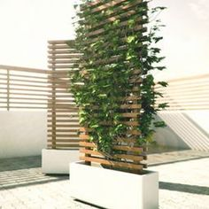 This concept consists of a mobile planter base made from a solid piece  of cast concrete.  The bottom of the base is inset to accommodate four  360 deg. castors.  The vertical wood structure forms a contemporary  lattice to promote/support plant growth.