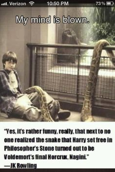 I think I at one point wondered, but I never actually gave it a lot of thought. Oh Harry Potter, after all this time you still have zingers up your sleeve!!!