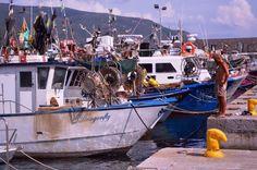 Marina di Campo auf Elba ist ein herrlicher Ferienort, mit historischem Stadtteil und Hafen am Ende der Bucht. Eingerahmt wird die Bucht von einem schönen Pinienwald.......weiter geht es unter: www.welt-sehenerleben.de #Italien #Elba #Toskana #Reisen #Urlaub