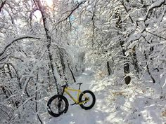 Winter Rides.