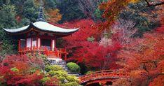Daigo-ji-à-Kyoto-Japon. Beautiful Places To Travel, Beautiful World, Amazing Places, Places Around The World, Around The Worlds, Palacio Imperial, Hitachi Seaside Park, Escape