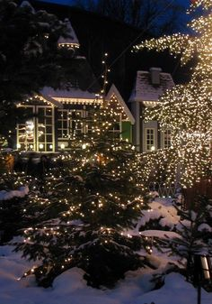 Waiting for Santa | Night before Christmas