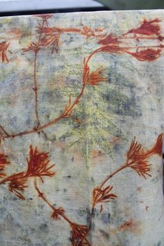Image result for eucalyptus dyeing silk with modants