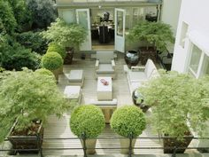 Don't let a small patio get you down. Grow a wide range of plants on the tiniest of terraces with the right container.