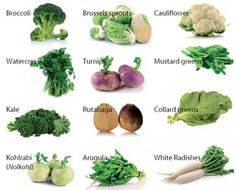 Brassica vegetables, are members of the cabbage family. >>> You can get more details by clicking on the image.