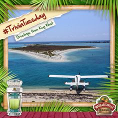 Ready for Round 2 of Key West Trivia?  Here we go! Which famous American novelist called Key West home? Tip: His house is a museum now.  #MGVSplendidSummer  (answer: Ernest Hemingway)
