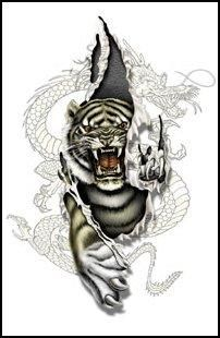 Awesome Dragon/Tiger Tattoo
