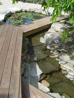 Patio Pond Design, Pictures, Remodel, Decor and Ideas - page 39