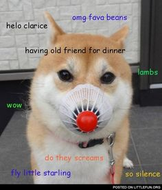 Silence of the doge. THIS IS THE BEST DOGE hahahaha