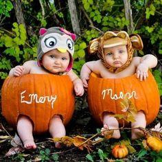 Babies_in_pumkpins