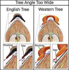 This is not true. It might be easier to fight an English saddle that fits but you can do the same with western its just takes a lil Horse Camp, Western Horse Tack, Horse Gear, Western Saddles, Western Saddle Pads, Trail Saddle, Horse Horse, Horses And Dogs, Show Horses