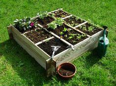 Home And Garden, Dom, Zero Waste, Plants, Vegetable Garden, Flats, Wood, Flora, Plant