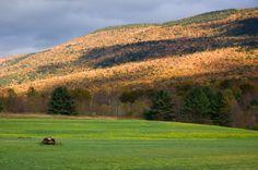 Arlington, Vermont  Gorgeous....