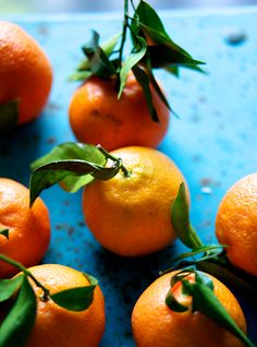 oranges | The Food Club