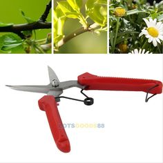 Plant Pruning Scissors Home Garden Cutter Flower Shears Hand Pruner Tool DIY New > Trust me, this is great! Click the image. : home diy yard