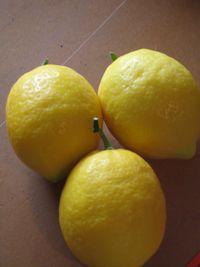 lemon2.jpg