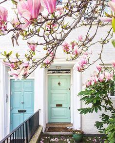 Pastel front doors
