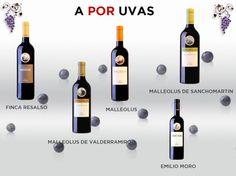 Emilio, Wine Rack, Html, New Years Eve, Wine, Wine Cellars, Lovers, Community, Wine Racks