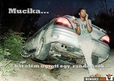 Minden, Hungary, Funny Jokes, Lol, Memes, Movie Posters, Husky Jokes, Meme, Film Poster