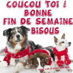 Bon week-end image 3 Bon Weekend, Bon Week End Image, Messages, Animals, Recherche Google, Respect, Portraits, Facebook, Motivation