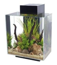 12 gallon Aquarium with 42-LED Black Light