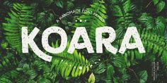 Feel free to download Koara Free Family Font! This is a hand-lettering font inspired from the nature. It looks beautiful on several backgrounds like leafs, jungle, nature images and even organic food. Koara font features A to Z lowercase and capital, alternative K, linear numbers and a series of glyphs. Perfect for many different projects such as title, quotes, small paragraphs, typographic compositions and logotype. Check it out and share if you find it useful!