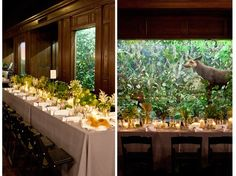 natural history museum los angeles wedding - Google Search
