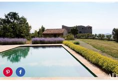 Love the lavendar and yellow plants lining the pool