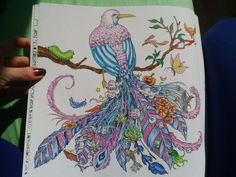 My Beautiful Bird From Coloring Book Animorphia By Kerby Rosanes Promeny Zvirat Antistresove Omalovanky