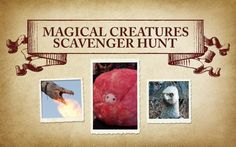 Keep An Eye Out For Magical Creatures In A New Scavenger Hunt