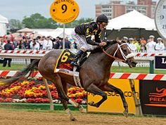 Oxbow in Preakness Upset