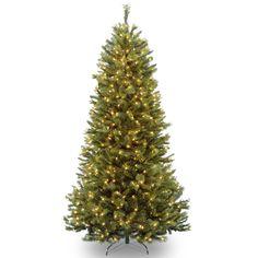 National Tree RRSL1-75LO 7 1/2' Rocky Ridge Sliim Pine Hinged Tree with 600 Clear Lights
